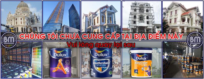 Dulux Quảng Ngãi